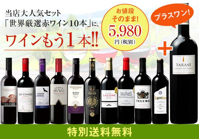 【特別送料無料】3大銘醸地入り!世界選りすぐり赤ワイン11本セット 87弾
