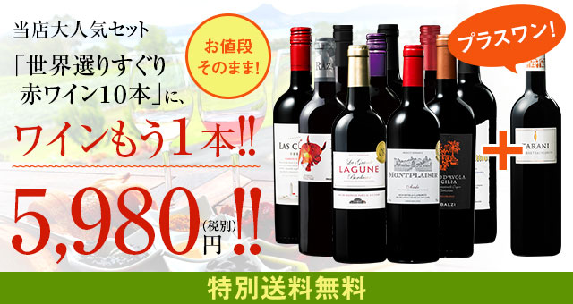 【特別送料無料】3大銘醸地入り!世界選りすぐり赤ワイン11本セット   93弾