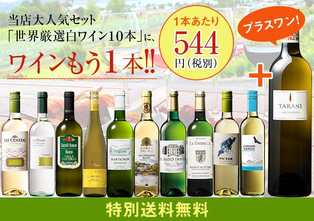 【特別送料無料】【56%OFF】世界選りすぐり白ワイン11本セット 第11弾