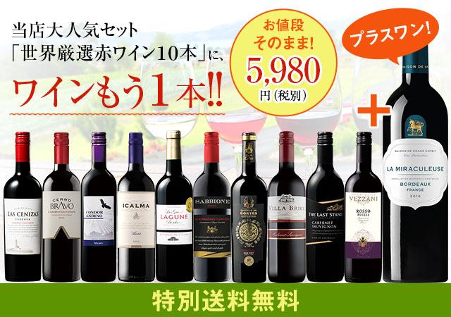 【特別送料無料】3大銘醸地入り!世界選りすぐり赤ワイン11本セット   100弾