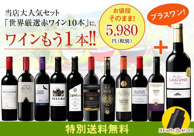 3大銘醸地入り!世界選りすぐり赤ワイン11本セット 第108弾