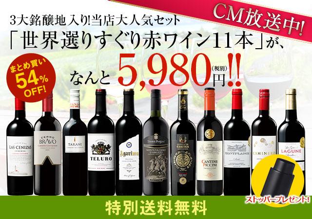 【特別送料無料】3大銘醸地入り!世界選りすぐり赤ワイン11本セット 第110弾