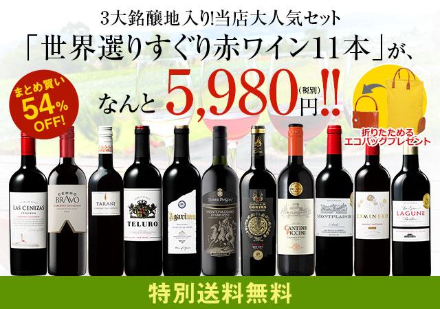 【特別送料無料】エコバッグプレゼント付3大銘醸地入り!世界選りすぐり赤ワイン11本セット