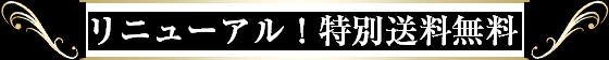 リニューアル!特別送料無料