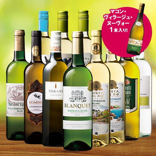 白ヌーヴォー付!3大銘醸地入り!世界の白ワイン12本セット