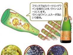 LESSON#002 世界のスパークリングワインを極める!