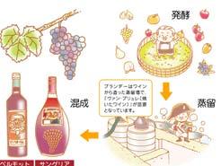 LESSON#015 改めてワインの基本を知る!