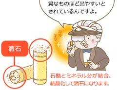 LESSON#035 澱(おり)とカビは良質なワインの証