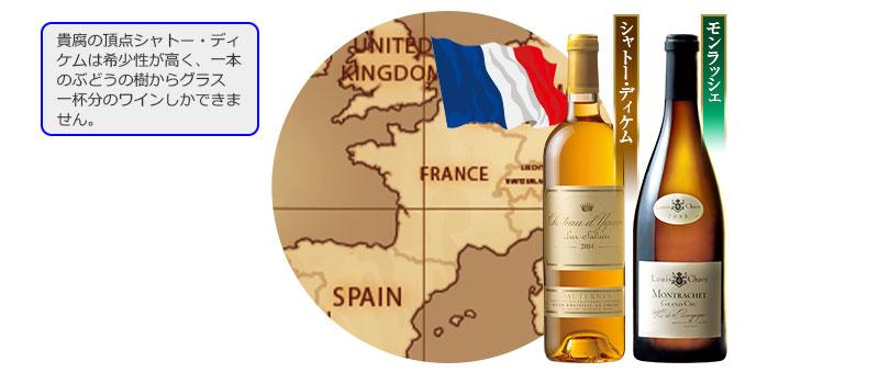 貴腐の頂点シャトー・ディケムは希少性が高く、一本のぶどうの樹からグラス一杯分のワインしかできません。
