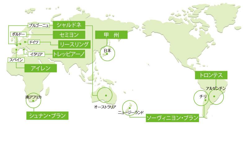 世界の白ワイン