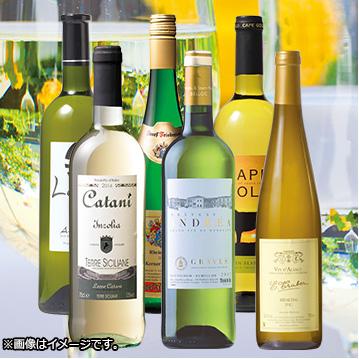ワインおまかせ便白6本コース