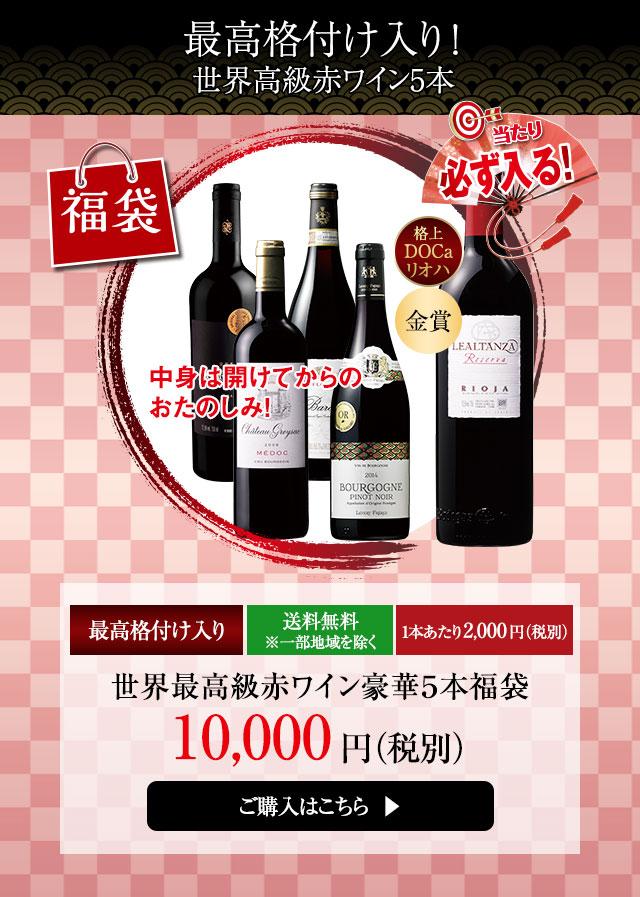 世界高級赤ワイン豪華5本福袋
