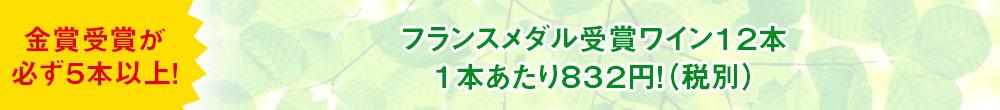 フランスメダル受賞ワイン12本1本あたり832円!(税別)