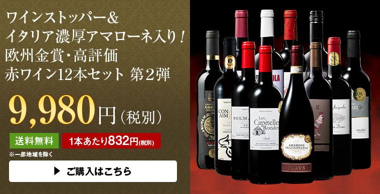 ワインストッパー&イタリア濃厚アマローネ入り!欧州金賞・高評価赤ワイン12本セット第2弾