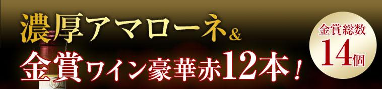 金賞総数14個! 濃厚アマローネ&金賞ワイン豪華赤12本!
