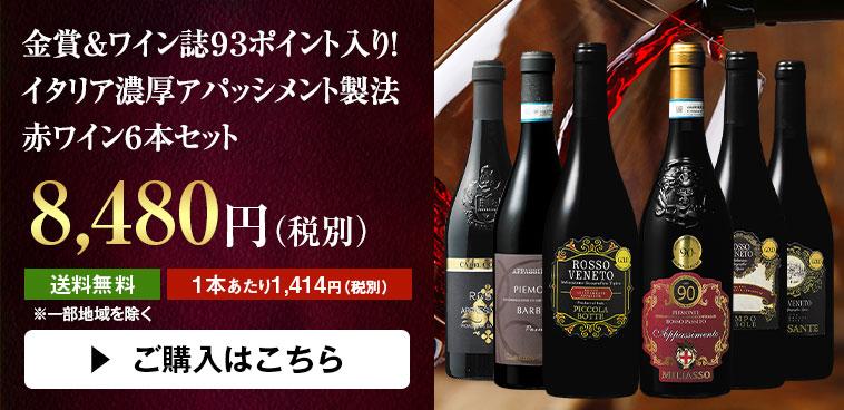 金賞&ワイン誌93ポイント入り!イタリア濃厚アパッシメント製法 赤ワイン6本セット