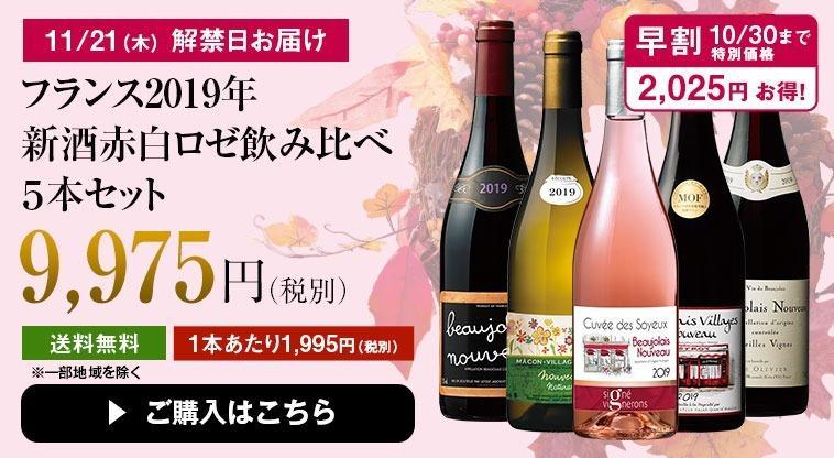 フランス2019年新酒赤白ロゼ飲み比べ5種5本セット