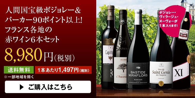 人間国宝級ボジョレー&パーカー90ポイント以上!フランス各地の赤ワイン6本セット