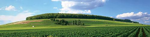 ブルゴーニュ風景