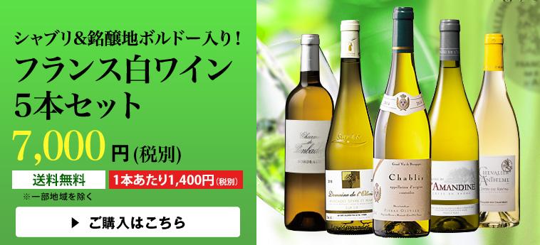 【30%OFF】シャブリ&銘醸地ボルドー入り!フランス白ワイン5本セット