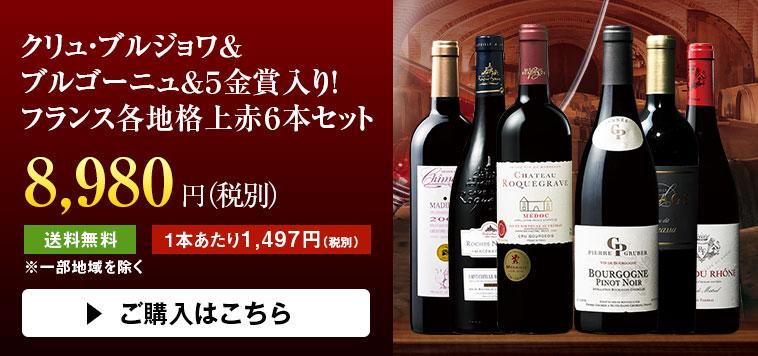 ボルドー最新 グレートヴィンテージ  2015&2016赤ワイン  飲み比べ10本セット