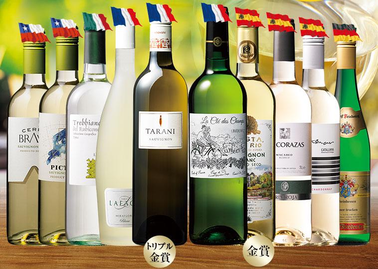 ボックスワイン付き! 世界の白ワイン10本セット