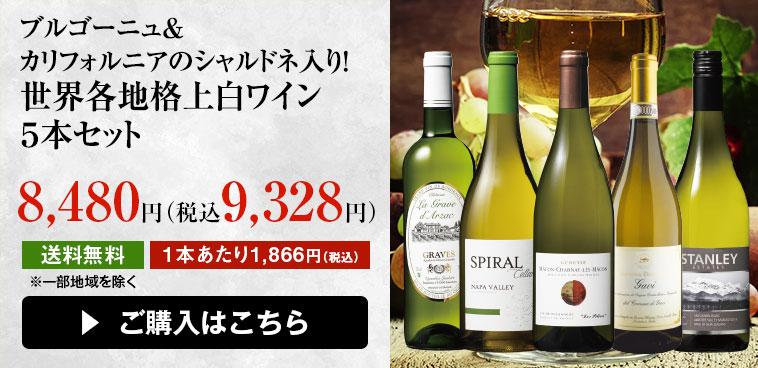 ブルゴーニュ&カリフォルニアのシャルドネ入り!世界各地格上白ワイン5本セット