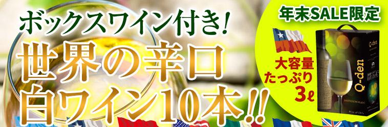 ボックスワイン付き!世界の辛口白ワイン10本!!