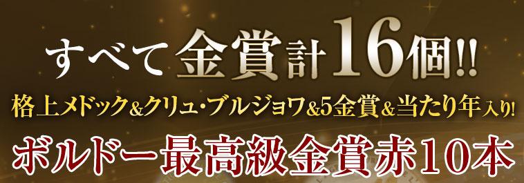 すべて金賞計16個 格上メドック&くりゅ・ブルジョワ&5金賞&当たり年入り!ボルドー最強級金賞赤10本