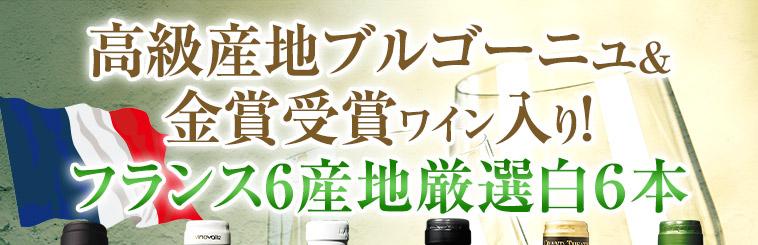 高級産地ブルゴーニュ&金賞受賞ワイン入り!フランス6産地厳選白6本