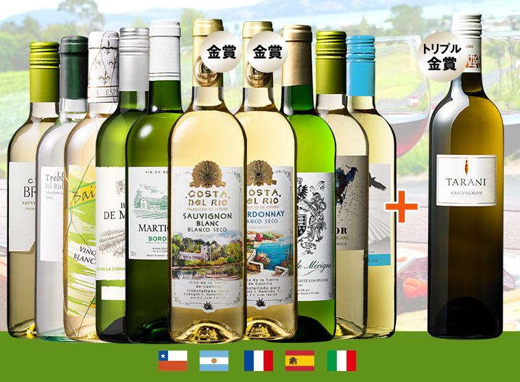 【特別送料無料】世界選りすぐり白ワイン11本セット 第6弾