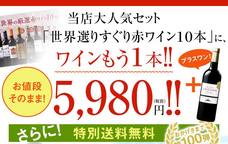 当店大人気セット「世界選りすぐり赤ワイン10本」にワインもう1本!!お値段そのまま5,980円