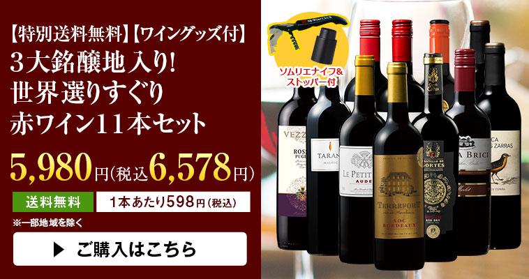 【特別送料無料】【ワイングッズ付】3大銘醸地入り! 世界選りすぐり赤ワイン11本セット