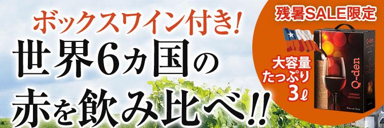 【45%OFF】ボックスワイン&三大銘醸国入り世界の赤ワイン10本セット
