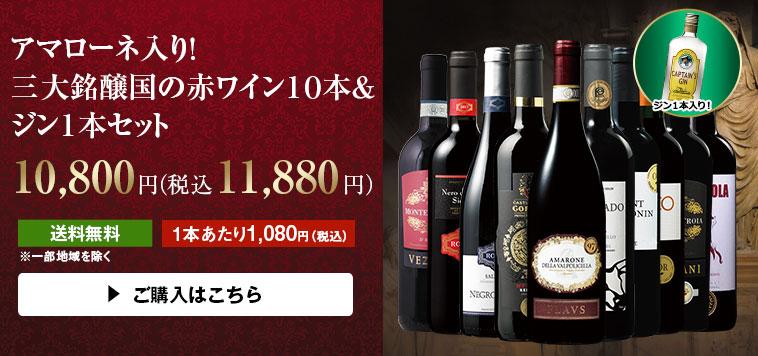 アマローネ入り!三大銘醸国の赤ワイン10本&ジン1本セット