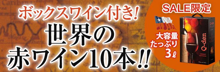ボックスワイン付き!世界の辛口赤ワイン10本!!