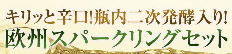 金賞&高評価入り! 三大銘醸地 辛口スパークリング 10本セット