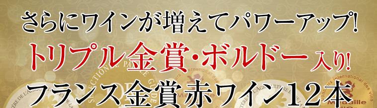 トリプル金賞・ボルドー入り!フランス金賞赤ワイン12本セット 第54弾