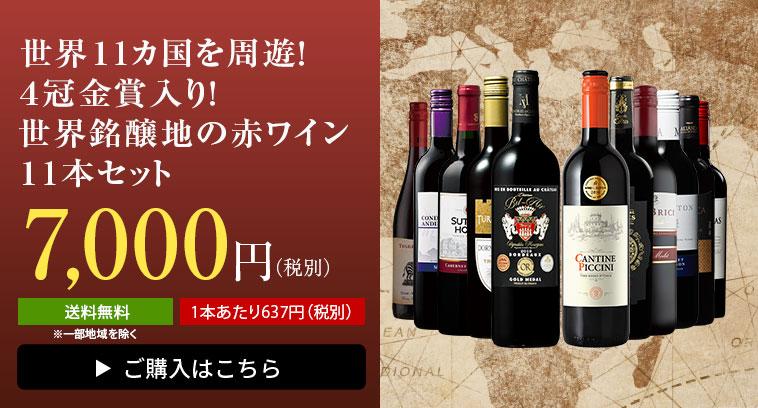 世界11ヵ国を周遊!4冠金賞入り!世界銘醸地の赤ワイン11本セット