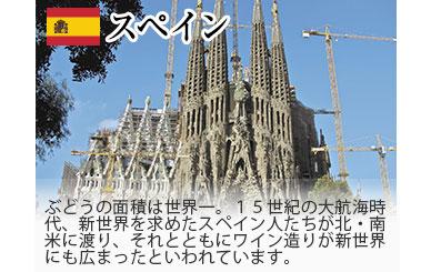 スペイン/ぶどうの面積は世界一。15世紀の大航海時代、新世界を求めたスペイン人たちが北・南米に渡り、それとともにワイン造りが新世界にも広まったといわれています。