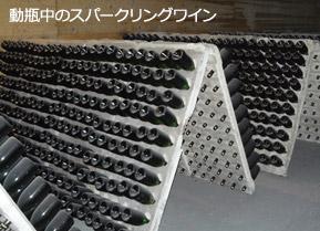 動瓶中のスパークリングワイン