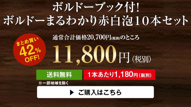 【42%OFF】ボルドーブック付!ボルドーまるわかり赤白泡10本セット