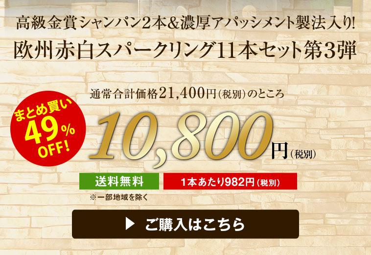 【49%OFF】高級金賞シャンパン2本&濃厚アパッシメント製法入り!欧州三大銘醸国赤白泡ワイン11本