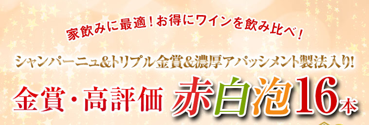 【59%OFF】シャンパーニュ&トリプル金賞&アパッシメント製法入り!欧州三大銘醸地の赤白泡16本