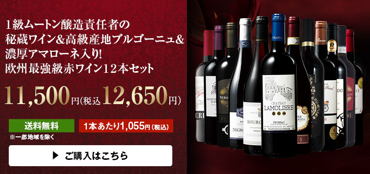 【48%OFF】1級ムートン醸造責任者の秘蔵ワイン&高級産地ブルゴーニュ&濃厚アマローネ入り!欧州最強級赤ワイン12本